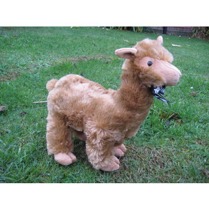 Large Alpaca Soft Toy - Colour Tan